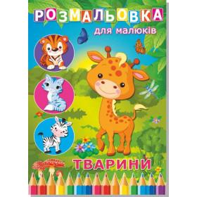 Книжка розмальовка тварини (10уп)