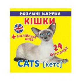Розумні картки. 12 карток Кішки.